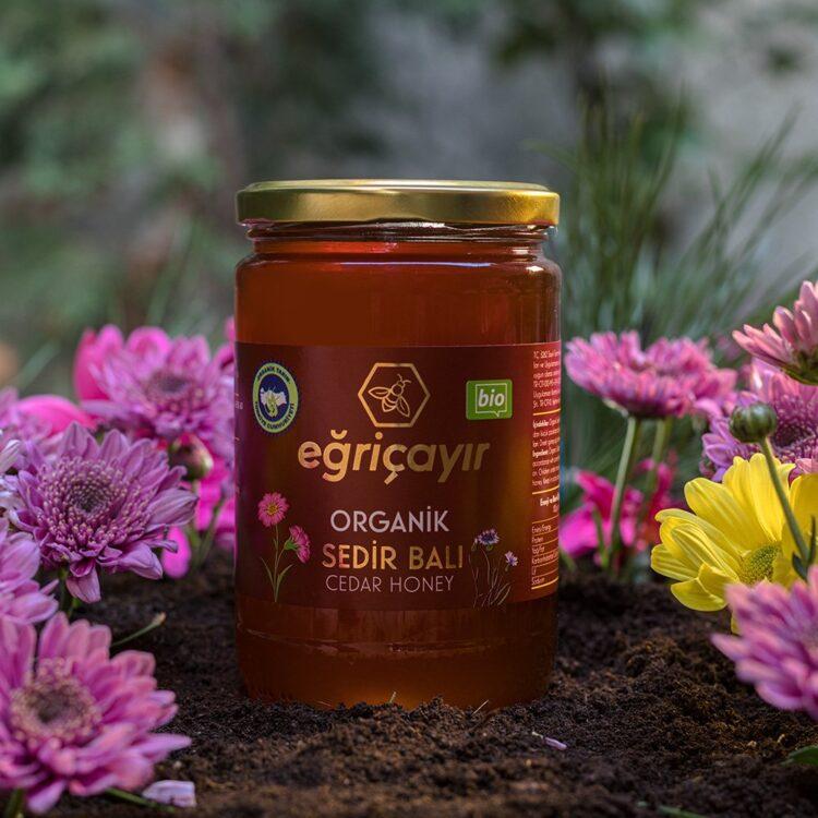 Turkish Natural Organic Cedar Honey - Eğricayır
