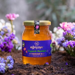 Turkish Natural Organic Thistle Honey - Eğricayır