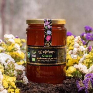 Turkish Natural Organic Flower Honey with Polyflora (Multi Flowered) - Egricayır