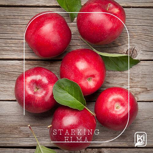 Turkish Natural Red Apple