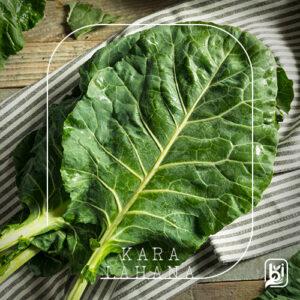 Turkish Natural Black Cabbage