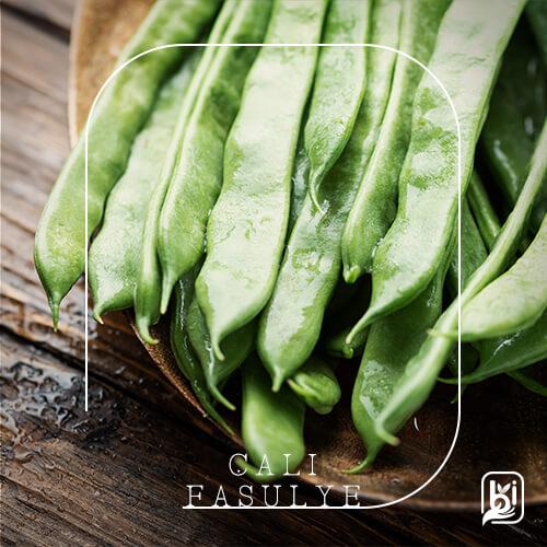 Turkish Natural Fresh Green Bush Beans