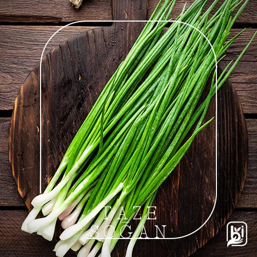 Turkish Natural Fresh Green Onion