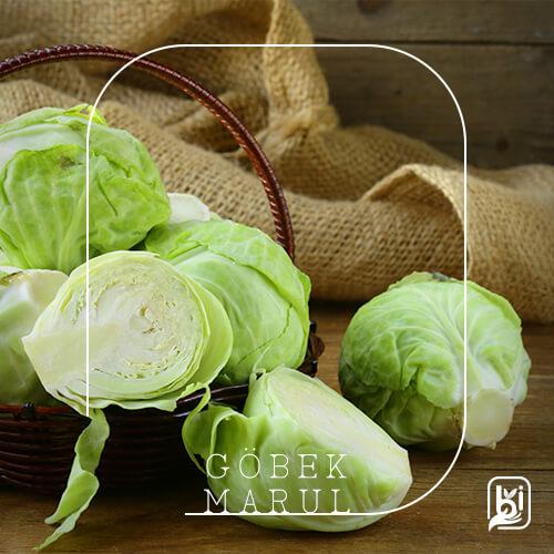 Turkish Natural Fresh Lettuce