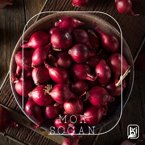 Turkish Natural Purple Onion