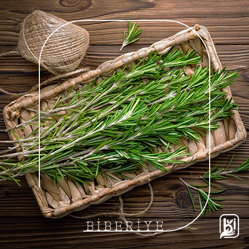 Turkish Natural Rosemary