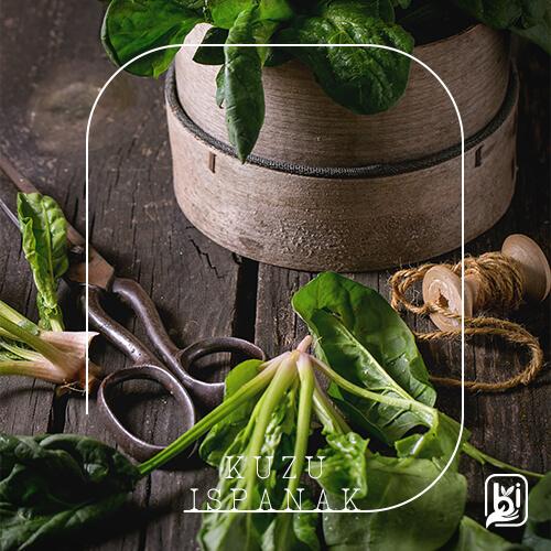 Turkish Natural Spinach