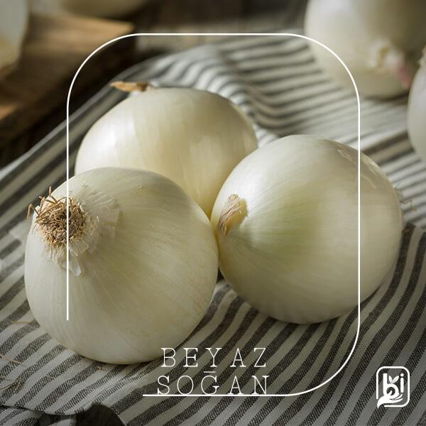 Turkish Natural White Onion
