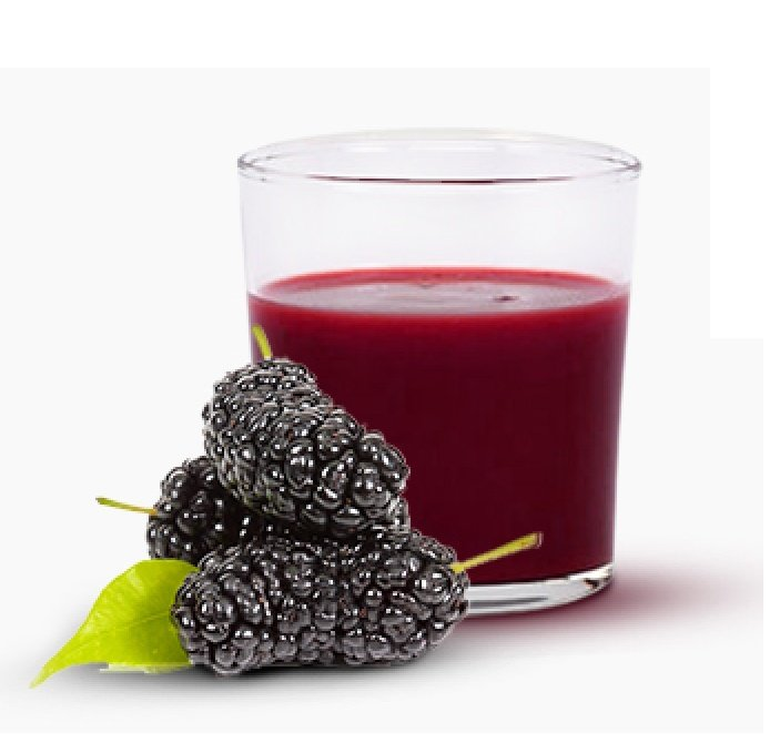 Turkish Organic Black Mulberry Syrup-Morus Nigra